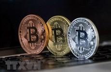 """Bitcoin tăng giá - Thêm một lần """"đầu voi đuôi chuột""""?"""