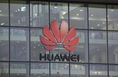 Mỹ dọa ngừng chia sẻ thông tin tình báo với các nước làm ăn với Huawei