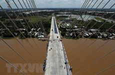 Mời thầu gói xây lắp cầu Mỹ Thuận 2 trị giá hơn 400 tỷ đồng