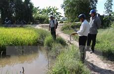 Hạn mặn ở Đồng bằng sông Cửu Long: Diễn biến phức tạp, khó lường