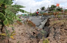 Cà Mau liên tiếp xảy ra sụt lún nghiêm trọng trong mùa khô hạn