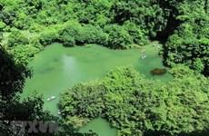 Ninh Bình: Phát hiện mới về cấu trúc quần xã côn trùng ở Tràng An