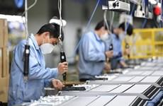Kinh tế toàn cầu trước mối nguy chệch hướng vì COVID-19