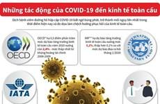 [Infographics] Những tác động của COVID-19 đến kinh tế toàn cầu