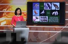 Bài dạy trên truyền hình cho học sinh Hà Nội: Dễ hiểu, đúng trọng tâm