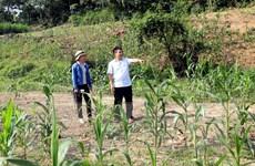 Tuyên Quang: Kiểm tra thông tin về tình trạng khai thác cát rầm rộ