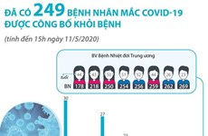 [Infographics] 249 bệnh nhân mắc COVID-19 tại Việt Nam khỏi bệnh