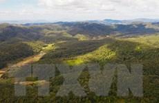 [Mega Story] Bảo tồn đa dạng sinh học: Giải pháp có ở thiên nhiên