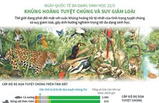 [Infographics] Khủng hoảng tuyệt chủng và suy giảm loài