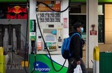 Nỗ lực cắt giảm sản lượng của OPEC+ đã đẩy giá dầu đi lên