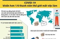 [Infographics] COVID-19 khiến hơn 17% thanh niên thế giới mất việc làm