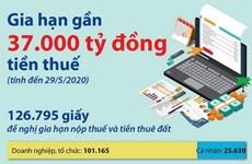 [Infographics] Gia hạn gần 37.000 tỷ đồng tiền thuế do dịch COVID-19