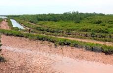 Thành lập Khu bảo tồn thiên nhiên đất ngập nước Thái Thụy ở Thái Bình