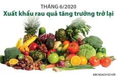 [Infographics] Xuất khẩu rau quả trong tháng 6 tăng trưởng trở lại