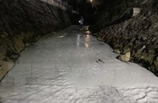 Bình Dương: Suối Sọ lại đổi màu, nổi bọt trắng xóa kéo dài