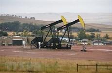 Giá dầu thế giới giảm hơn 2% trong phiên giao dịch 23/7