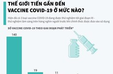 [Infographics] Thế giới tiến gần đến vắcxin COVID-19 ở mức nào?