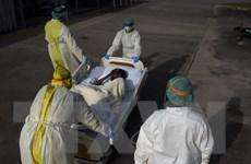 Mỹ tiếp tục ghi nhận hơn 60.000 ca mắc COVID-19 mới trong ngày