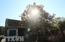 Khu vực Trung Bộ tiếp tục nắng nóng gay gắt đến ngày 29/7