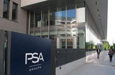 Tập đoàn ôtô PSA của Pháp vẫn có lợi nhuận trong dịch COVID-19