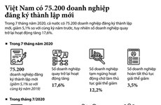 [Infographics] Việt Nam có 75.200 doanh nghiệp đăng ký thành lập mới