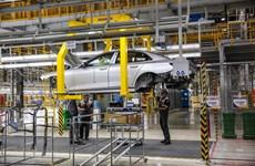 Tuyên Quang: Khởi tố nhân viên showroom ôtô lừa đảo chiếm đoạt tài sản