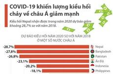 [Infographics] COVID-19 khiến lượng kiều hối chảy về châu Á giảm mạnh