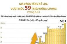 [Infographics] Giá vàng tăng kỷ lục, vượt mốc 59 triệu đồng/lượng