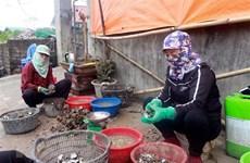 Quảng Ninh hỗ trợ giải quyết việc làm cho người dân bị ảnh hưởng dịch