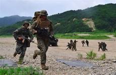 Quân đội Hàn Quốc và Mỹ khởi động cuộc tập trận mùa Hè