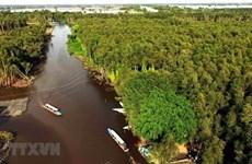 Đồng bằng sông Cửu Long cần thúc đẩy mọi giải pháp để tăng trưởng