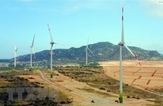 Lực hút nhà đầu tư vào lĩnh vực năng lượng tái tạo tại Việt Nam
