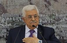 Những chiến lược của Palestine trên con đường gập ghềnh đã chọn