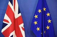 """Đàm phán thương mại Anh-EU chưa thấy """"ánh sáng cuối đường hầm"""""""