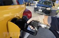 Giá dầu châu Á giảm mạnh trong phiên chiều 17/9 do lo ngại nhu cầu yếu
