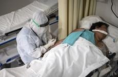 Gần 955.700 ca tử vong do dịch COVID-19 trên toàn thế giới