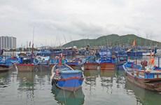 Tỉnh Kiên Giang chính thức mở 2 Cảng cá Tắc Cậu và An Thới