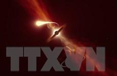 """Hình ảnh chi tiết đầu tiên về hiện tượng hố đen """"nuốt chửng"""" ngôi sao"""