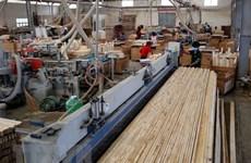 Doanh nghiệp ngành gỗ tìm cơ hội xuất khẩu trong khó khăn