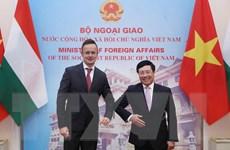 Hungary mong muốn thúc đẩy quan hệ Đối tác toàn diện với Việt Nam