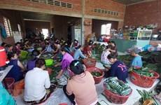 Người dân xứ Dừa Bến Tre hướng về đồng bào lũ lụt miền Trung