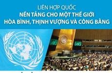 Liên hợp quốc: Nền tảng cho thế giới hòa bình, thịnh vượng, công bằng