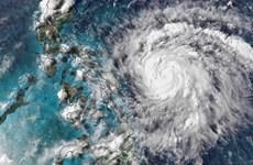 Philippines sơ tán gần 1.800 người để ứng phó với bão Molave