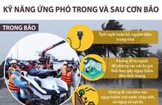 [Infographics] Những kỹ năng ứng phó trong và sau cơn bão
