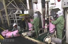 Nông, lâm, thủy sản xuất siêu 7,9 tỷ USD trong 10 tháng qua