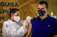 Dịch COVID-19: WHO xây dựng cơ chế bảo hiểm rủi ro do vắcxin