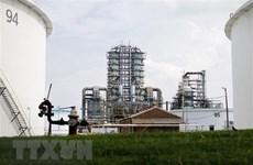 Giá dầu trên thị trường thế giới tăng tuần thứ ba liên tiếp