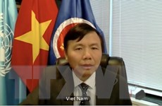 Việt Nam ủng hộ tiến trình hòa bình do người Afghanistan làm chủ