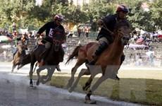 [Photo] Lào Cai: Khai mạc Giải đua ngựa xã Na Hối mở rộng lần thứ nhất