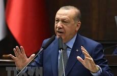 """Thổ Nhĩ Kỳ đang đứng trước nguy cơ trỗi dậy """"quá đà""""?"""